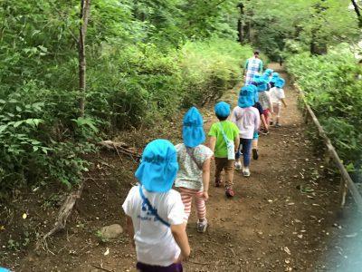 3・4・5歳児クラス お散歩遠足に行ってきました。